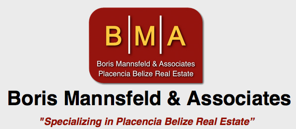 Boris Mannsfeld & Associates Winter 2015 Real Estate Newsletter