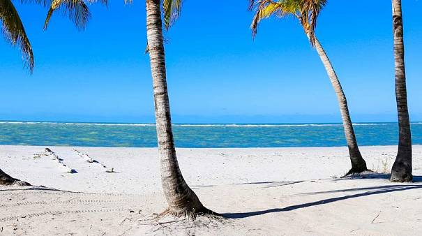 Captiva Island, FL, USA